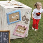 Boy or Girl!? A Vintage-Inspired Baby Gender Revelation!