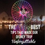 The 50+ Best Tips That Made Our Disney Trip Unforgettable